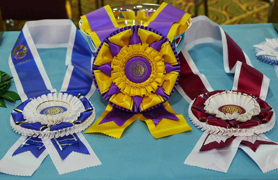 beautiful ribbons and rosettes